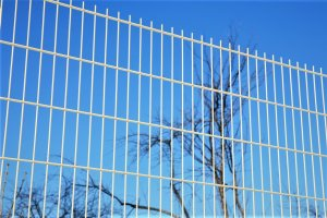 Забор из сварной сетки: особенности и плюсы